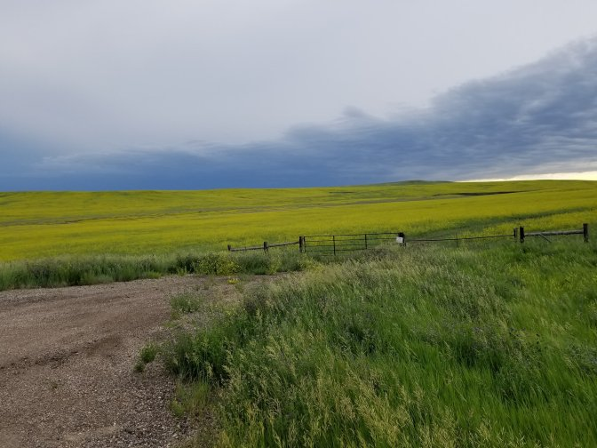 180615 On route to Spearfish, SD